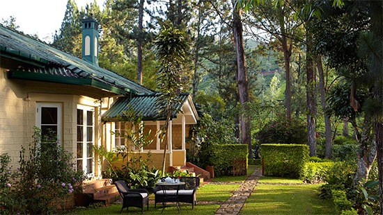 ceylon tea trails meilleur hotel sri lanka